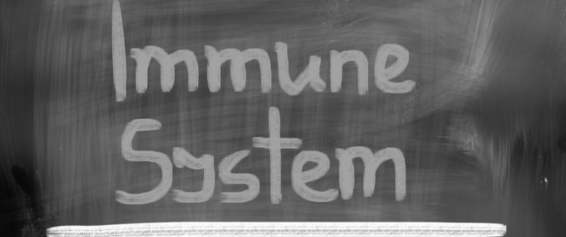 Basic Lifestyle Guidelines to Boost the Immune System
