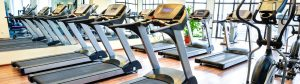 gym equipment insurance